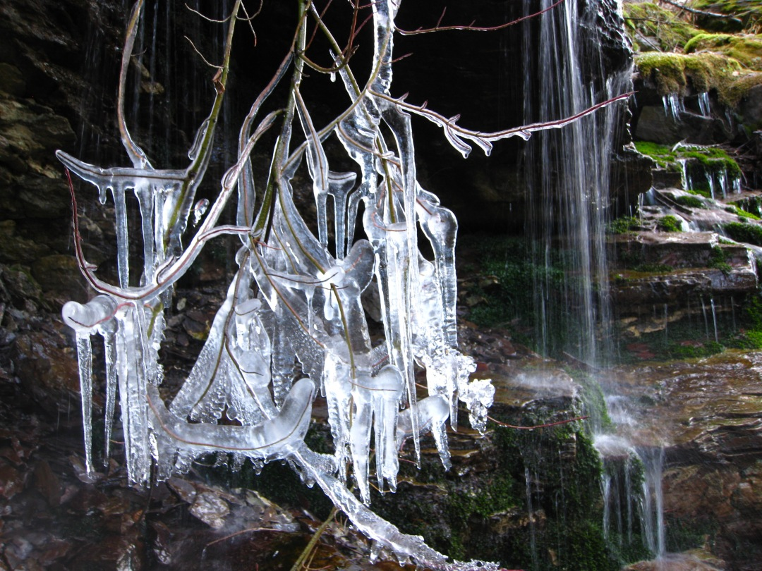 Icicles and waterfalls on the Alpine Trail.  Flathead County.