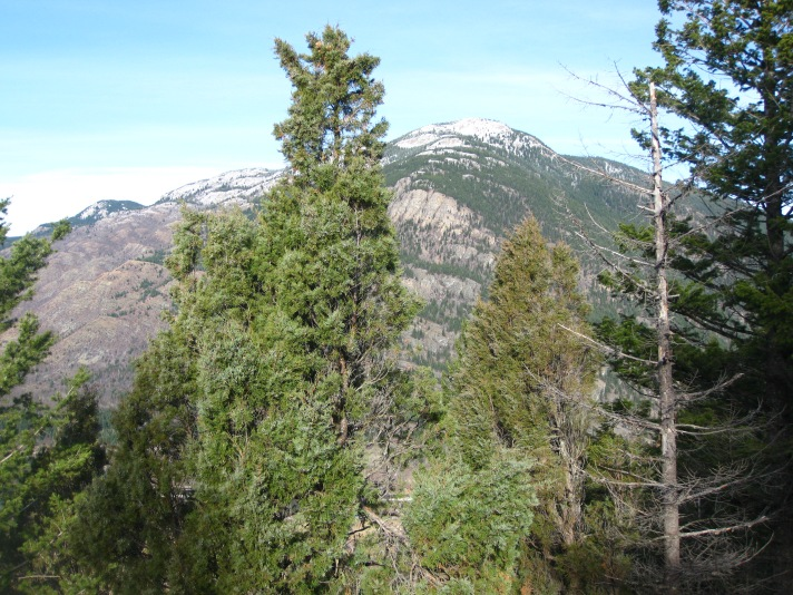 Looking north across the Flathead River valley.