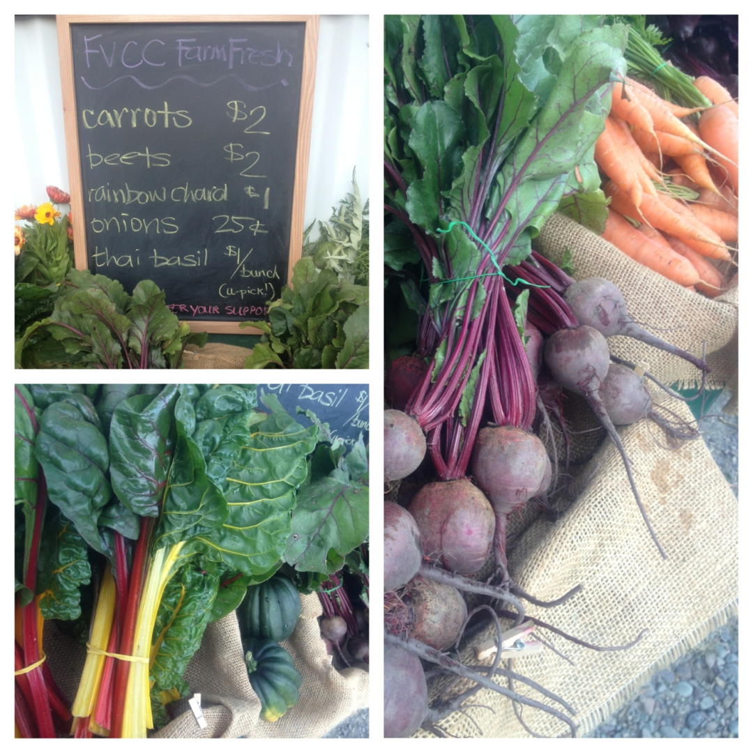Fresh Montana Produce from our very own Flathead Valley CC Garden!  The carrots on the homepage are from FVCC as well.  Mmmmm.