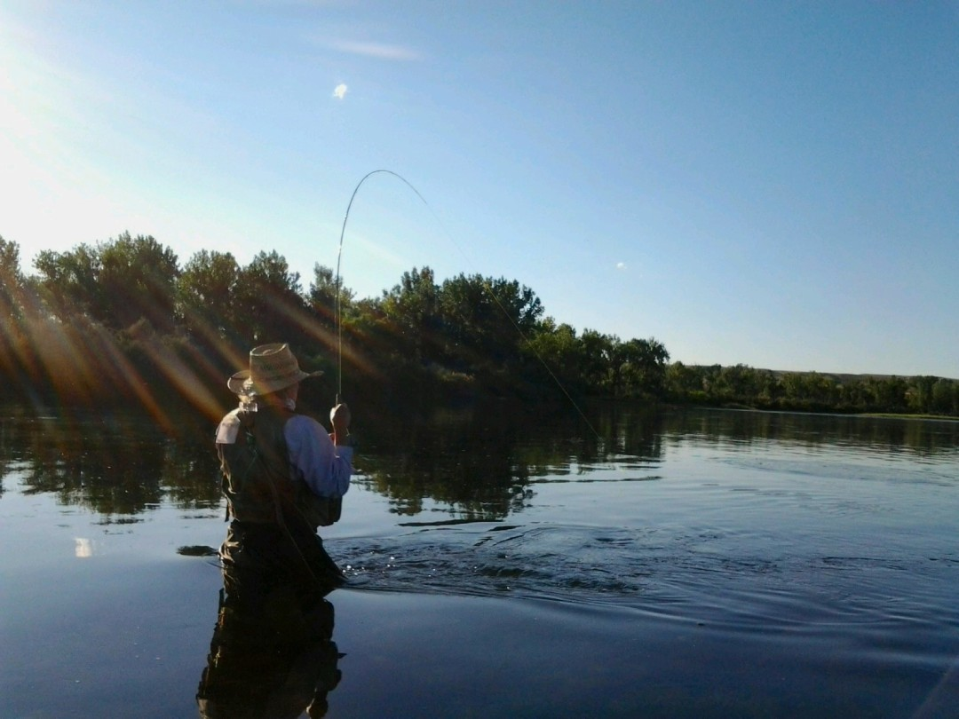 fishing the bighorn LF
