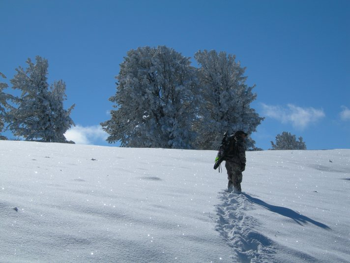 Tracy S. from Bozeman making some fresh tracks, while looking for Elk tracks.